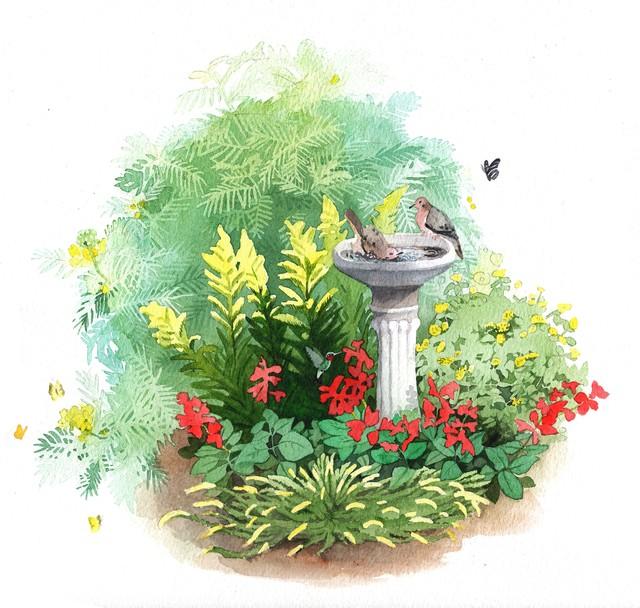 Kim Heise garden template.jpg